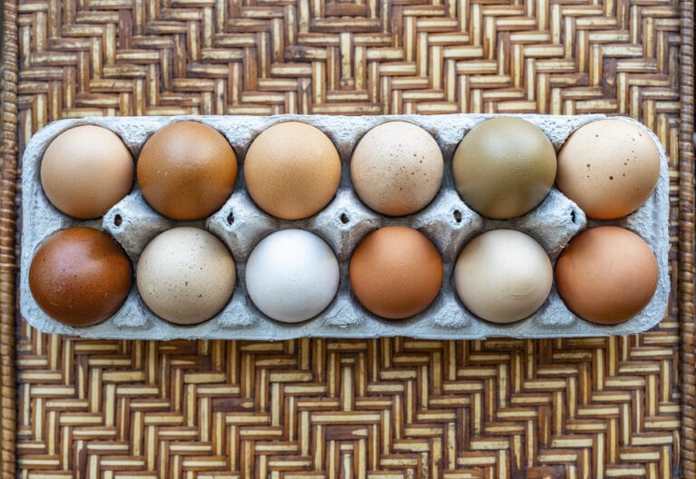 an overhead shot of a dozen multi-colored eggs in a carton on a thatched whicker background